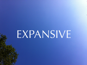 2013 expansive 1